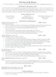 Examples Of Engineering Resumes Classy Resume Career Summary Example Andaleco