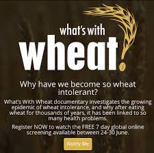 Whats with Wheat? (2016) subtitulada