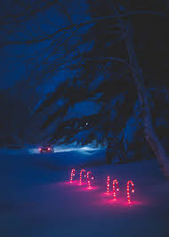 car driving away at night. Fine Driving Car Driving Away With Several Red Glowing Candy Canes Sticked In The Snow  At Night With Driving Away At Night C