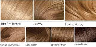 Light Brown Hair Color Chart Light Brown Hair Color Chart World Of Template Format