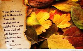 october autumn quote and picture