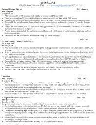 finance director 1 director sample resume