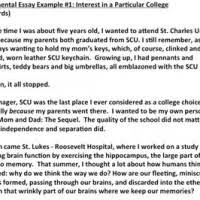 williams college essay williams college supplement essay examples mistyhamel