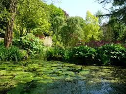 fletcher moss gardens rock pond
