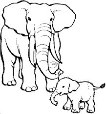 Small Picture Zoo Animals Coloring Pages ElephantsAnimalsPrintable Coloring