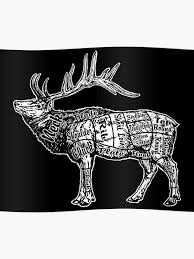 Butcher Chart Elk Poster