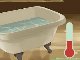 image titled give a small dog a bath step 9