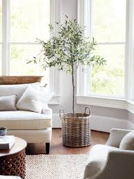 plant trio in corner | plants in decor | Pinterest | Plants ...
