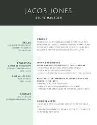 Professional Store Manager Resume Proforma Cv Template