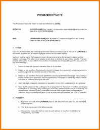 what is animal testing essay paragraph