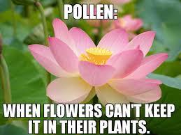 Pollen Vortex: All the Memes You Need to See | Heavy.com via Relatably.com