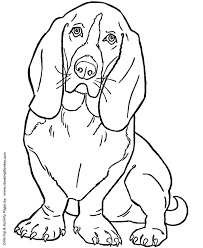 Dog Coloring Pages Printable Basset Hound Coloring Page Sheet And