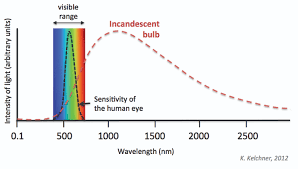 Incandescent Light Bulb Diagram Schematics Online