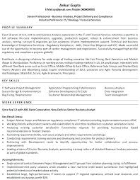 Financial Resume Objective Best Of Business Banker Resume Magnificent Investment Banking Resume Example