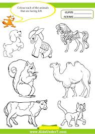 Zoo Worksheets Animals Read And Colour June Is Wild Animal ...