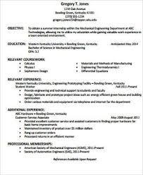 Resume Objective Statements 12 A Resume Objective Statement Apigram ...