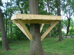 free treehouse plans pdf basic tree house construction ideas s limonchello basic tree house pictures h43 house