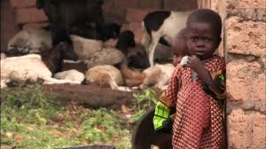 children orphaned by ebola face long term consequences part 2 children orphaned by ebola face long term consequences part 2 pbs newshour