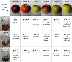 Tablet Magazine Picks The Best Apples And Honey To Help You