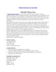 Invoices Modeling Resume The Best Format Throughout Invoice