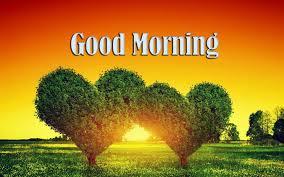 Good Morning HD Image Free ...