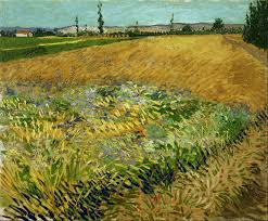 wheat fields van gogh series wheat field also wheat field alpilles foothills in the background 1888 van gogh museum amsterdam f411