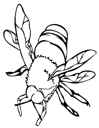 Small Picture Bee Coloring Page Handipoints