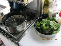Image result for stinging nettle cooking