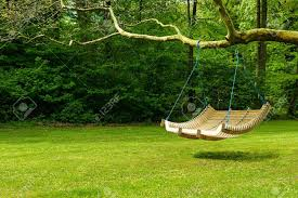curved swing bench hanging from the bough of a tree in a lush garden with woodland