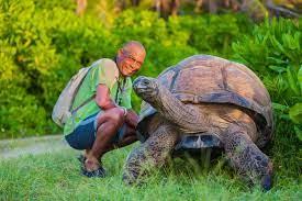 esmeralda-tortoise-bird-island-seychelles-wanderlust-destination-photograper  – Photographer Anhede – Kickass photos. No more. No less.