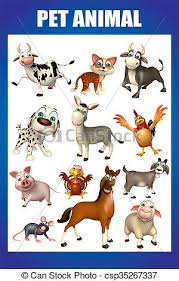 Pet Animal Picture Chart Pet Animal Chart