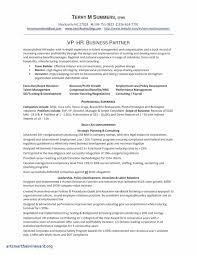 Payroll Manager Resume Sample Payroll Manager Resume Example Fresh Business Analyst Resume