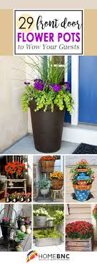 Front Door Plants Australia Feng Shui Makeover Plan Copy Pot Plant ...