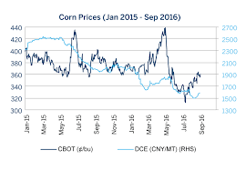 U S China Corn Markets Converge Amid Surplus Cme Group
