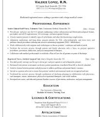 Resume Summary Or Objective Best of Summary Examples For Resumes Fdlnews