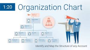 Company Org Chart Org Chart Who Is Who In The Company