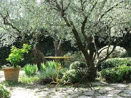 Small Picture Best 10 French gardens ideas ideas on Pinterest French garden