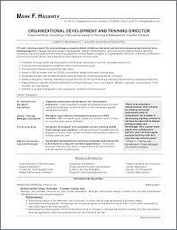 Skills On A Resume Stunning Skills To Put On Resume Elegant 48 Beautiful What To Put For Skills