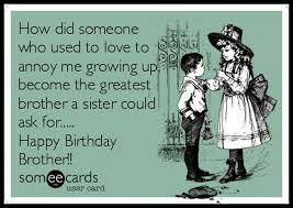 Funny Brother Quotes Inspiration FunnyBirthdayQuotesForBrotherFromSister48 GUYS NUMBERS