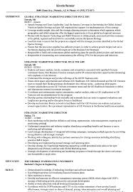 Sample Healthcare Marketing Resume Strategic Marketing Director Resume Samples Velvet Jobs