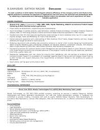 Sample Resume For Web Designer Fascinating SEO Expert Resume