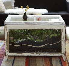 terrarium furniture. diy terrarium coffee table close up furniture