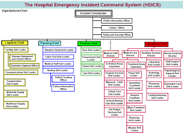 Ics Structure Chart Developing A Hospital Emergency Incident Command System Heics