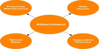 attachment theory essay attachment theory essay attachment theory young children and their families
