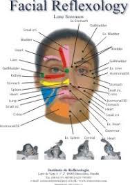Cranial Reflexology Chart Cogent Reflexology Of The Face Chart Reflexology
