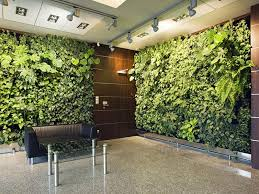 green wall office. Living-wall-in-office5 Green Wall Office A
