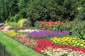 low cost flower gardens flower garden