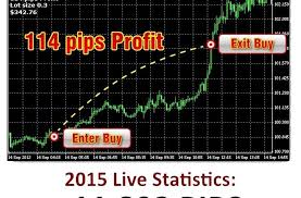Todd Chart Trade With Todd Forex Trading Course 1 0 2 0 Forex Shop