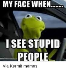 kermit driving face. Exellent Driving Kermit The Frog My Face When And Stupidity MY FACE WHEN I For Driving I