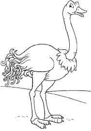 Small Picture Smiling Ostrich Coloring Page Color Luna